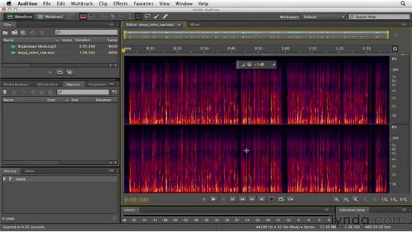 Using the Spectral Frequency Display: Audition CS6 Essential Training