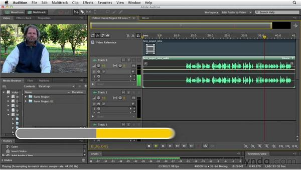 Working with audio from video: Audition CS6 Essential Training