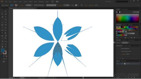 Welcome: Illustrator CS6 Essential Training