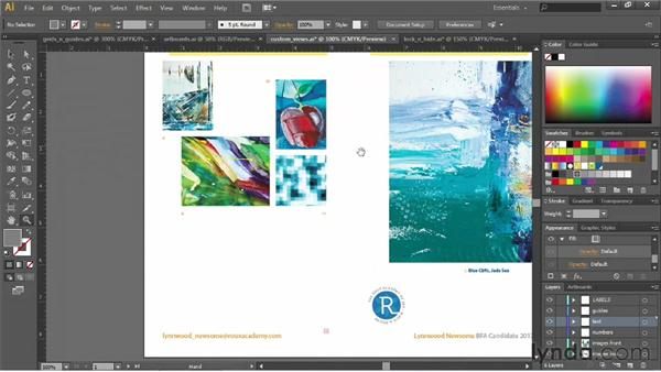 Creating and using custom views: Illustrator CS6 Essential Training