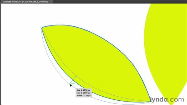 Creating variable-width strokes: Illustrator CS6 Essential Training