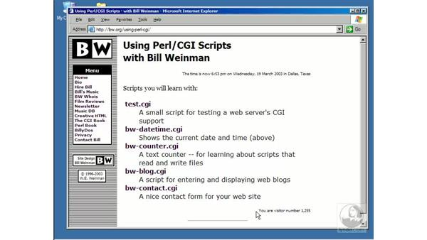 introduction: Using Perl/CGI Scripts