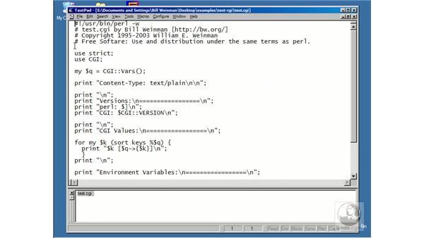 anatomy of a Perl script: Using Perl/CGI Scripts