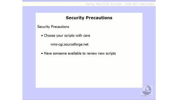 security precautions: Using Perl/CGI Scripts
