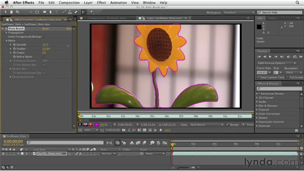 Rotoscoping with the Roto Brush: After Effects CS6 Essential Training