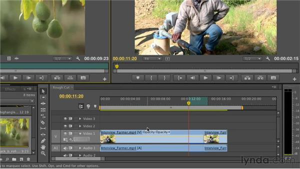 Targeting specific tracks in the Timeline: Premiere Pro CS6 Essential Training