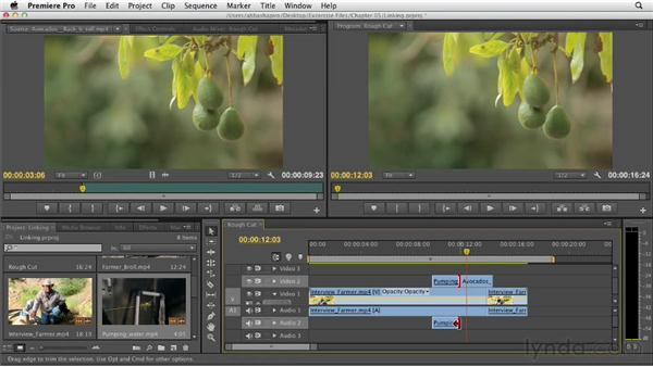 Linking and unlinking audio and video tracks: Premiere Pro CS6 Essential Training