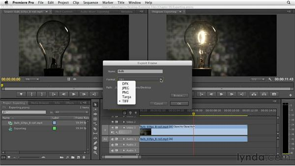 Exporting and re-importing stills: Premiere Pro CS6 Essential Training