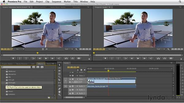Applying filters to audio: Premiere Pro CS6 Essential Training