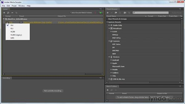 Using the Adobe Media Encoder: Flash Professional CS6 Essential Training