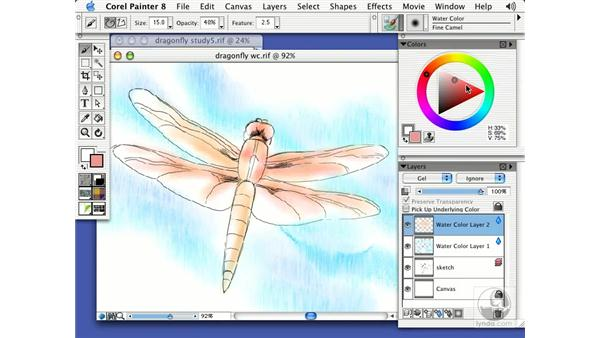 washes, modeled form and details in water color: Getting Started with Corel Painter 8