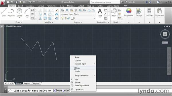 Understanding the anatomy of a command: AutoCAD 2013 Essentials: 01 Interface and Drawing Management