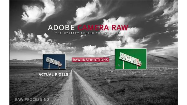 What is Adobe Camera Raw?: Photoshop CS6 for Photographers: Camera Raw 7
