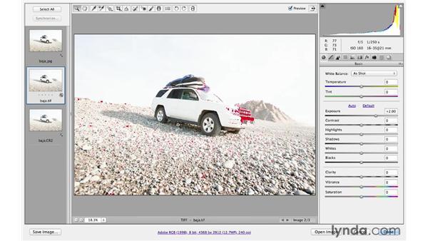 Exploring RAW vs. JPEG or TIFF files : Photoshop CS6 for Photographers: Camera Raw 7