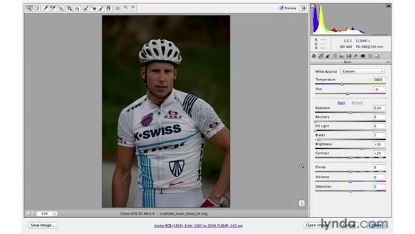 Auto-toning and correcting white balance: Photoshop CS6 for Photographers: Camera Raw 7