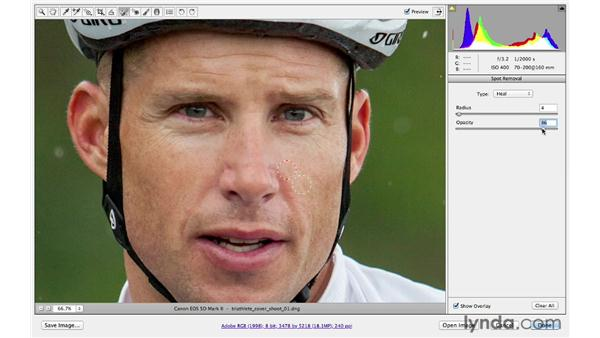 Removing distractions: Photoshop CS6 for Photographers: Camera Raw 7