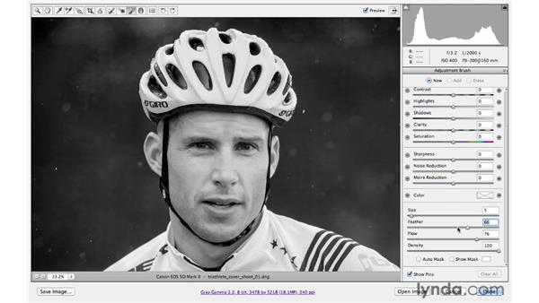 Making a localized correction: Photoshop CS6 for Photographers: Camera Raw 7