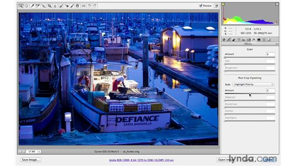 Previewing the before and after of different adjustments: Photoshop CS6 for Photographers: Camera Raw 7
