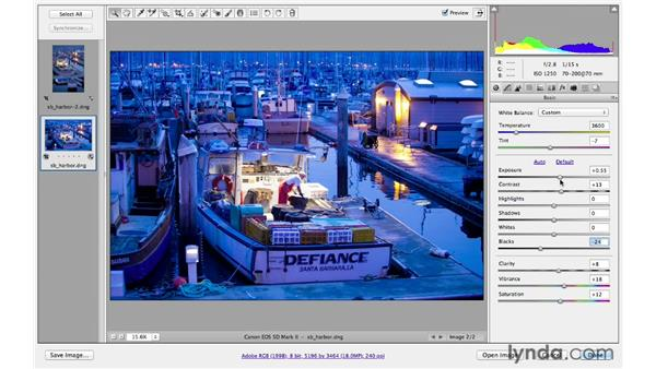 Working with multiple files : Photoshop CS6 for Photographers: Camera Raw 7