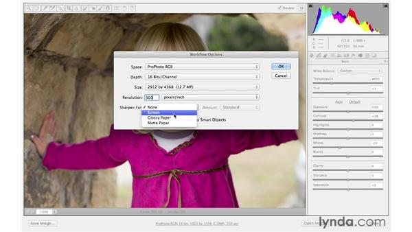 Resizing in Camera Raw with workflow options: Photoshop CS6 for Photographers: Camera Raw 7