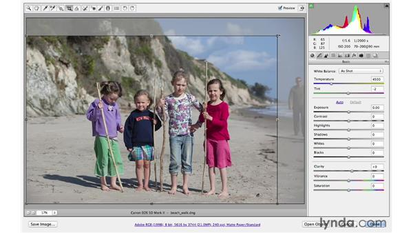 Recomposing with the Crop tool: Photoshop CS6 for Photographers: Camera Raw 7