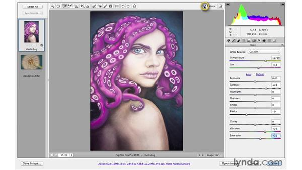 Using the White Balance tool and controls: Photoshop CS6 for Photographers: Camera Raw 7