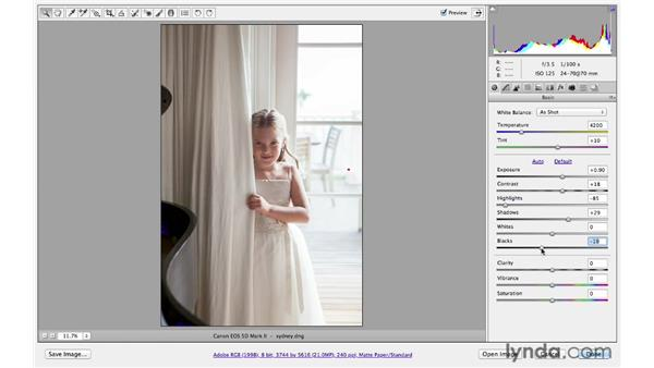 Recovering highlight and shadow detail: Photoshop CS6 for Photographers: Camera Raw 7