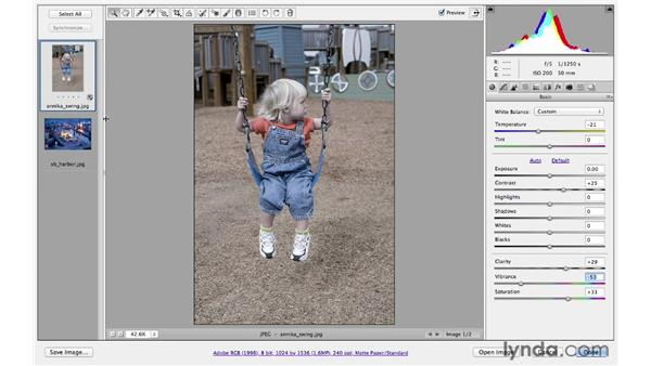Making creative color adjustments: Photoshop CS6 for Photographers: Camera Raw 7