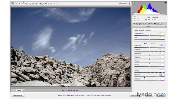 Using the parametric-tone curve: Photoshop CS6 for Photographers: Camera Raw 7
