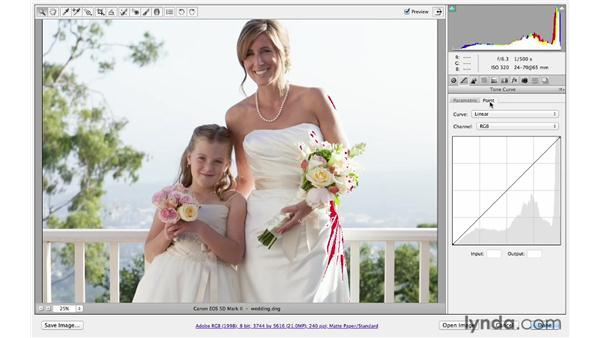Using the point-tone curve: Photoshop CS6 for Photographers: Camera Raw 7