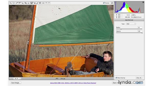 Introducing the Spot Removal tool: Photoshop CS6 for Photographers: Camera Raw 7