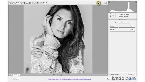 Removing distracting background elements: Photoshop CS6 for Photographers: Camera Raw 7