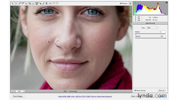 Removing blemishes on a face: Photoshop CS6 for Photographers: Camera Raw 7