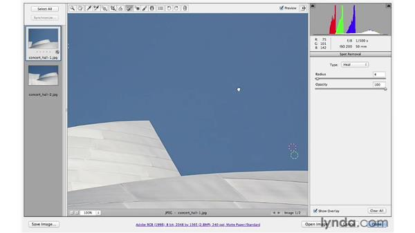 Removing dust on the lens or the camera sensor: Photoshop CS6 for Photographers: Camera Raw 7