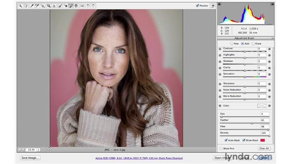Changing the background color: Photoshop CS6 for Photographers: Camera Raw 7
