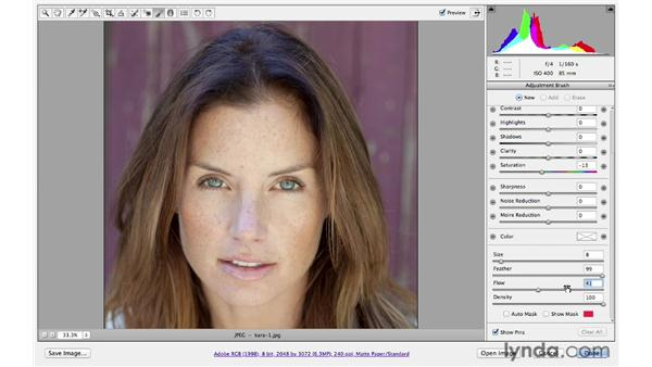 Changing the color temperature: Photoshop CS6 for Photographers: Camera Raw 7