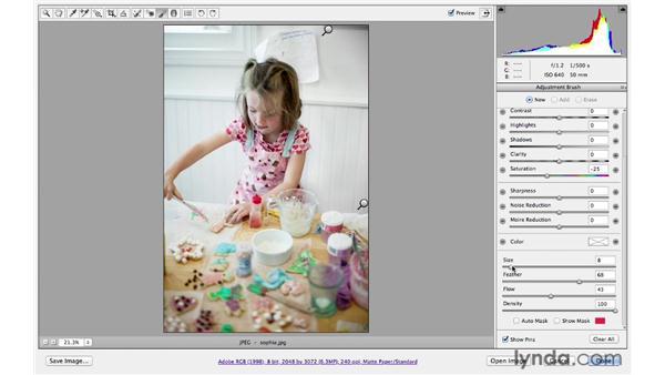 : Photoshop CS6 for Photographers: Camera Raw 7