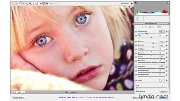 Enhancing the color, tone, and sharpness of the eyes: Photoshop CS6 for Photographers: Camera Raw 7