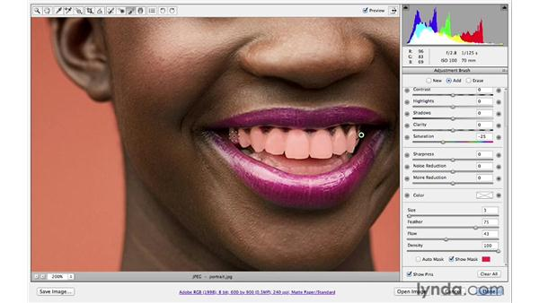 Whitening teeth: Photoshop CS6 for Photographers: Camera Raw 7