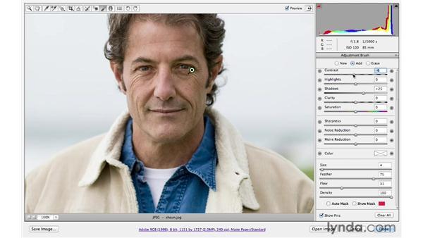 Brightening shadows and darkening highlights: Photoshop CS6 for Photographers: Camera Raw 7