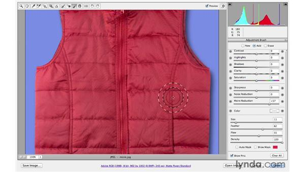 Removing moiré patterns: Photoshop CS6 for Photographers: Camera Raw 7