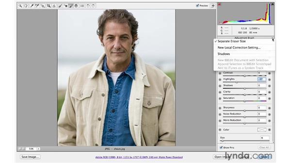 Creating Adjustment Brush presets: Photoshop CS6 for Photographers: Camera Raw 7