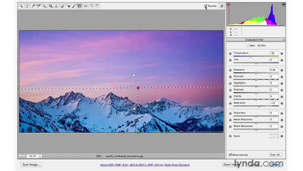 Exploring creative effects with the Graduated Filter tool: Photoshop CS6 for Photographers: Camera Raw 7