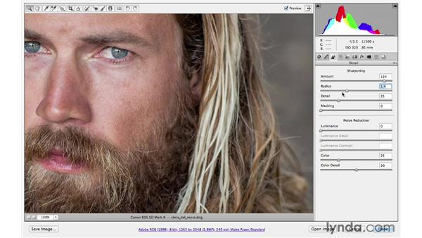 Using the Basic and Detail panels together: Photoshop CS6 for Photographers: Camera Raw 7