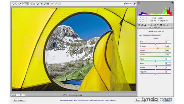 Enhancing color and tone: Photoshop CS6 for Photographers: Camera Raw 7