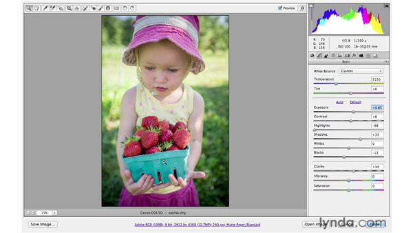 Using the Basic and HSL panels together: Photoshop CS6 for Photographers: Camera Raw 7