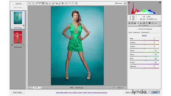 Making color changes: Photoshop CS6 for Photographers: Camera Raw 7