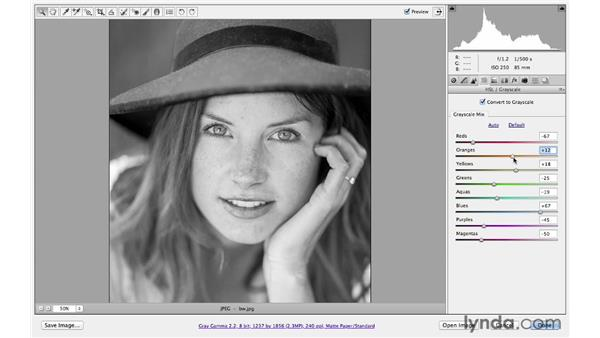 Exploring simple black-and-white conversion: Photoshop CS6 for Photographers: Camera Raw 7