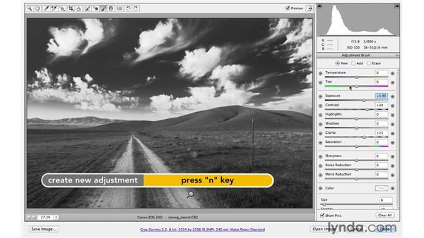 Creating a dramatic black-and-white landscape: Photoshop CS6 for Photographers: Camera Raw 7