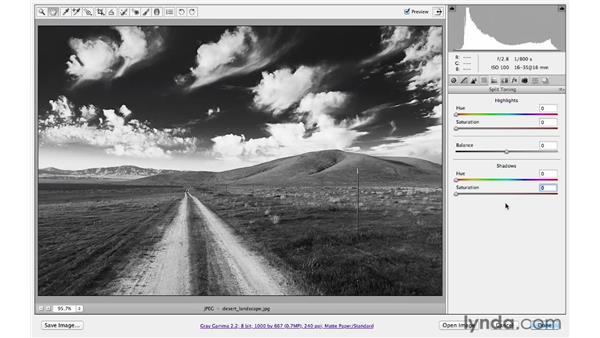 Exploring traditional black-and-white toning: Photoshop CS6 for Photographers: Camera Raw 7